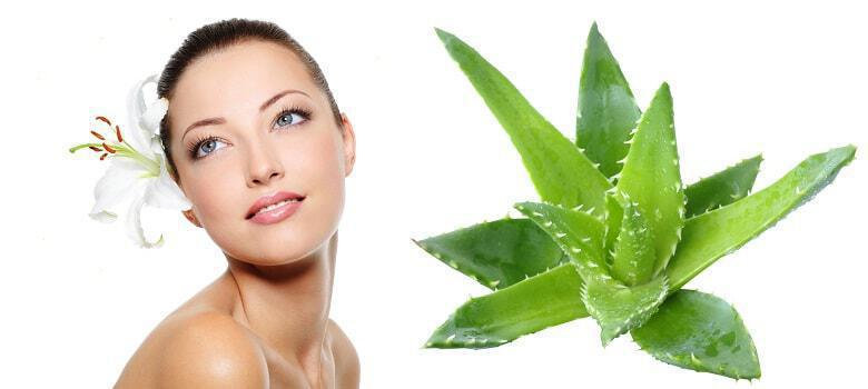 6 Homemade Aloe Vera Face Creams The Woman Online